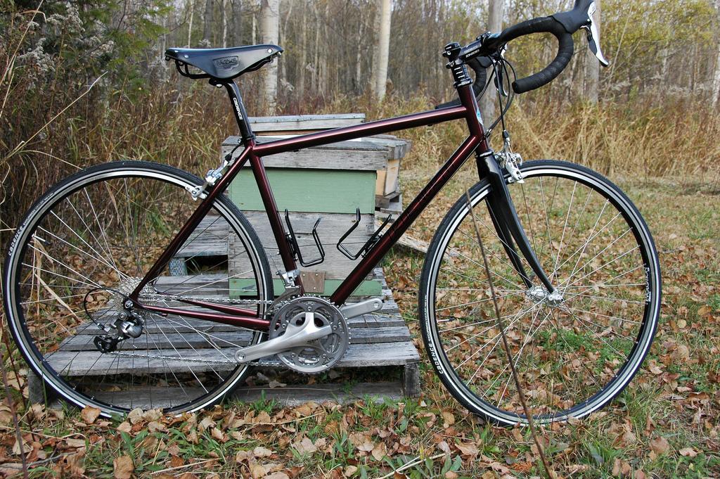 georges-road-bike.jpg