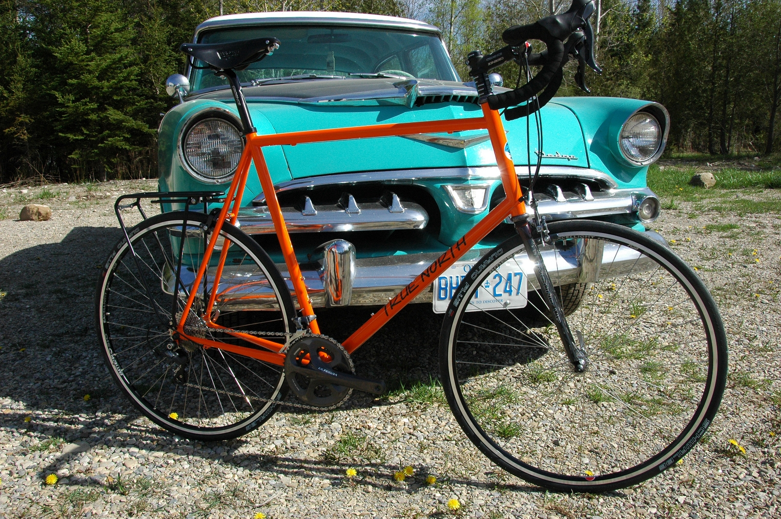 johns-xxl-road-bike