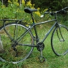 elises-flatbar-road-bike-1.jpg