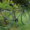 elises-flatbar-road-bike.jpg